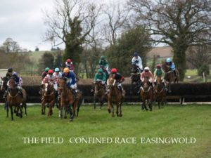 Point to Point Race at Easingwold