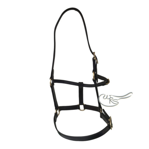 Leather Headcollar