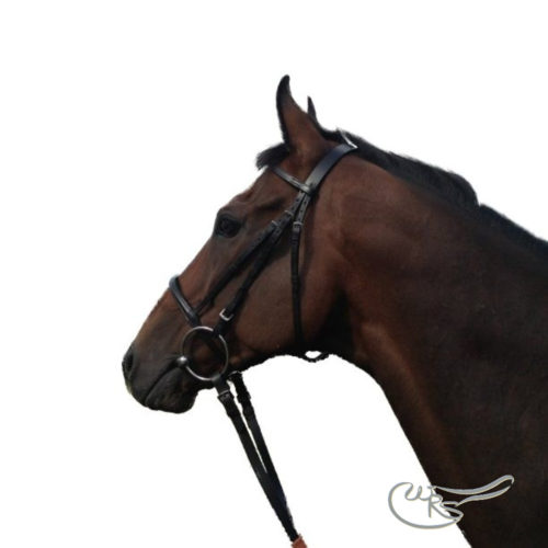 English Leather Race Bridle