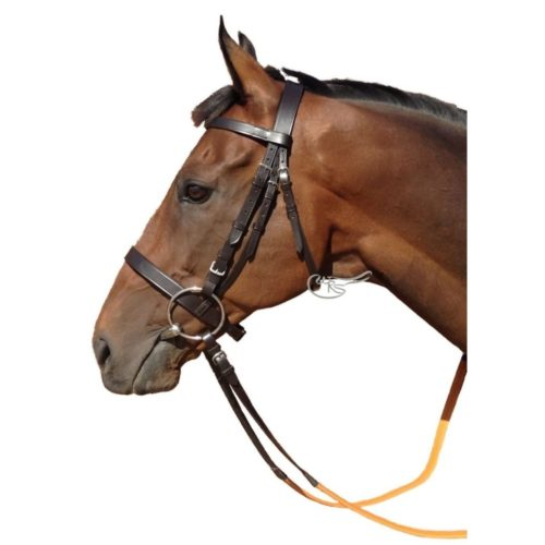 Leather Exercise Bridle