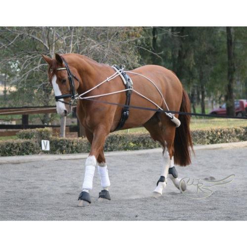 Zilco Lunge Training Aid