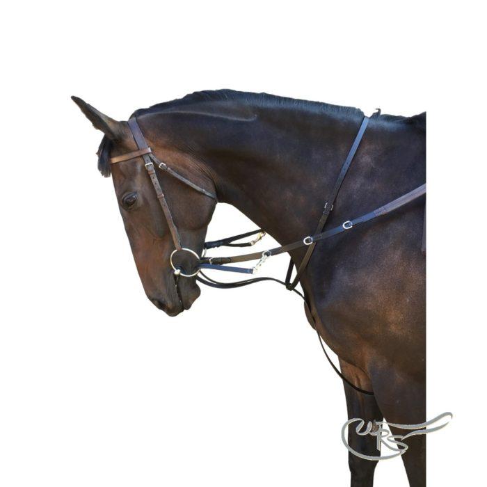 Leather Market Harborough Training System